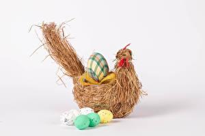 デスクトップの壁紙、、復活祭、ニワトリ、白背景、卵、食品