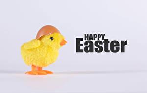 Bilder Ostern Hühner Text Englisch