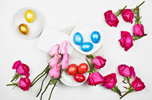Photo Easter Rose Gray background Eggs Multicolor Plate Food