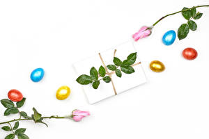Image Easter Roses White background Gifts Eggs Multicolor Flowers Food