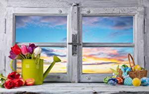 Fotos Ostern Tulpen Kaninchen Fenster Weidenkorb Eier Blüte Lebensmittel