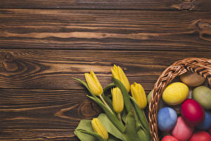 壁紙,復活節,郁金香,木板,黄色,卵,七彩,模板賀卡,花卉,食物,