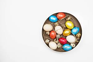 Bilder Ostern Weißer hintergrund Eier Mehrfarbige Vorlage Grußkarte Blüte