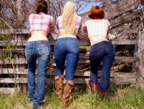 Wallpaper Fence Three 3 Back view Redhead girl Blonde girl Human back Legs Wearing boots Jeans Ass buttocks young woman
