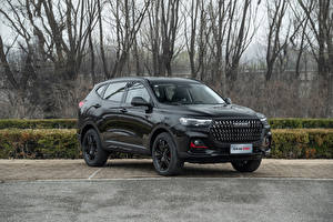 Wallpapers Haval Chinese Crossover Black Metallic H6 GT, 2021 automobile