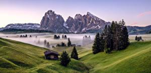 Fotos Italien Gebirge Morgen Alpen Nebel Bäume South Tyrol, Dolomites Natur