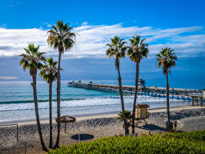 Wallpaper USA Coast Pier Ocean California Beach Palms San Clemente Beach