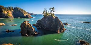 Wallpapers USA Coast Crag Trees Oregon