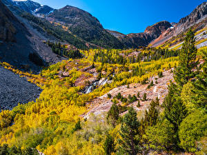 Wallpaper USA Mountains Autumn California Trees Lundy Canyon Nature