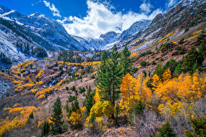 Pictures USA Mountains Autumn California Trees Lundy Canyon Nature