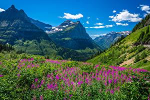 Papéis de parede EUA Montanhas Parque Glacier National Park Naturaleza imagens