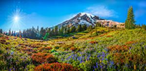 Hintergrundbilder USA Gebirge Park Landschaftsfotografie Panoramafotografie Washington Sonne Mount Rainier National Park