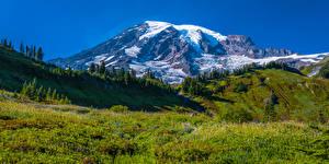 Bureaubladachtergronden Amerika Parken Bergen Grasland Landschap van Panorama Mount Rainier National Park Natuur