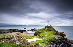 Bilder Vereinigtes Königreich Leuchtturm Küste Wales Anglesey Natur