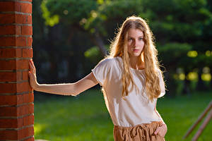 Fonds d'écran La pose Tee-shirt Voir Blondeur Fille Angelina jeune femme