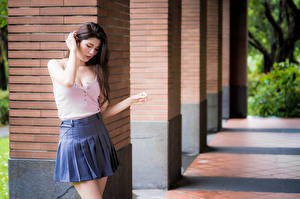 Pictures Asiatic Blurred background Pose Skirt Blouse Girls