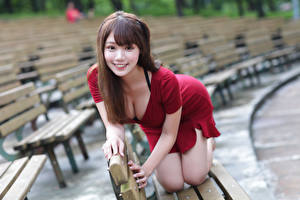Wallpapers Asiatic Bokeh Smile Posing Dress Neckline Bench Staring Girls