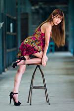 Bilder Asiatisches Stuhl Posiert Kleid Bein Blick Mädchens