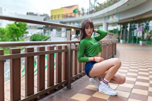 Hintergrundbilder Asiatisches Posiert Sitzen Bein T-Shirt Shorts Blick junge Frauen