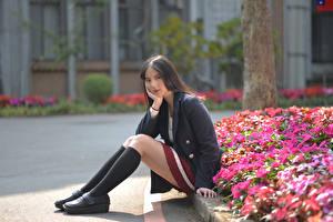 Hintergrundbilder Asiatische Sitzend Bein Long Socken Sakko Starren junge frau