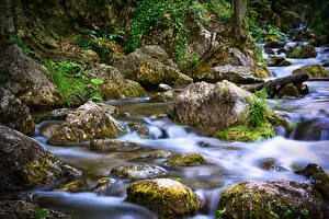 Pictures Austria Stone Stream Moss