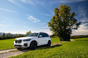Wallpaper BMW CUV White Metallic 2019-21 X5 xDrive45e iPerformance Worldwide Cars