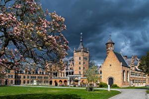 Pictures Belgium Spring Castles Landscape design Flowering trees Lawn Mortsel, Castle Cantecroy Cities