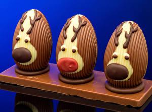 Fondos de escritorio Pascua Creativo Chocolate Cervidae Huevo Diseño