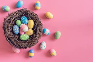 Fondos de escritorio Pascua Huevo Fondo rosa