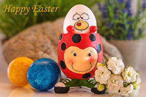 Fondos de escritorio Pascua Eustoma Originales Texto Ingleses Huevos Alimentos Flores