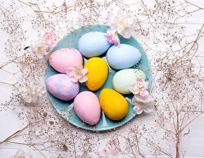 Fondos de escritorio Pascua Plato Huevos