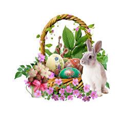 Fondos de escritorio Pascua Conejos Cesta de mimbre Huevo El fondo blanco