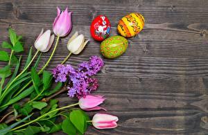Fondos de escritorio Pascua Tulipas Lilas Huevos Flores