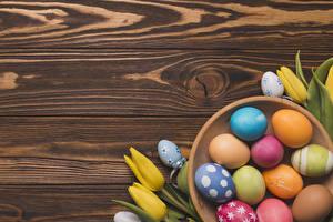 Fondos de escritorio Pascua Tulipas Holzplanken Huevo Multicolor Diseño Flores