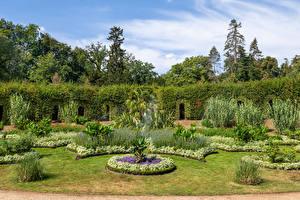 Bakgrunnsbilder Tyskland Potsdam Parker Design Plen Busker Park Sanssouci Natur