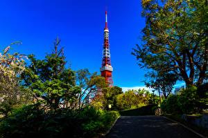 Hintergrundbilder Japan Präfektur Tokio Türme Bäume Shiba Park