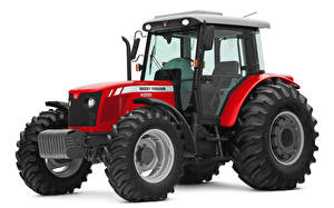 Pictures Tractor Red White background Massey Ferguson 4299 Cabinado, 2010-14