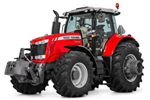 Wallpaper Tractor Red White background Massey Ferguson 7725, 2017 --
