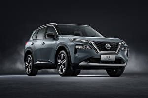Bilder Nissan Sport Utility Vehicle Graue Metallisch X-Trail, China, 2021 automobil