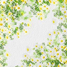 Fondos de escritorio Dibujado Textura Papel Rama Flores