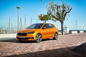 Fotos & Bilder Skoda Orange Metallisch Fabia, (Worldwide), 2021 Autos