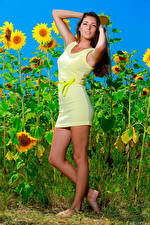 Photo Sunflowers Gown Legs Pose Staring Rosella RU 98 female