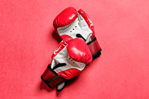 Pictures Pink background Two Glove Taekwondo sparring gloves Sport