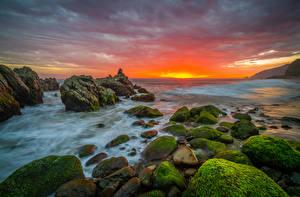 Picture USA Coast Stone Sunrises and sunsets California Moss