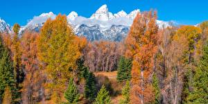 Pictures USA Mountains Autumn Trees Clouds Grand Teton National Park, Wyoming Nature