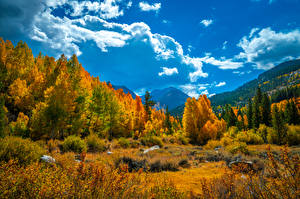 Picture USA Mountains Autumn Scenery California Trees Clouds Nature