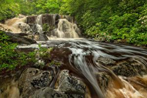 Wallpaper USA Park Waterfalls Stone Crag Blackwater Falls State Park Virginia Nature