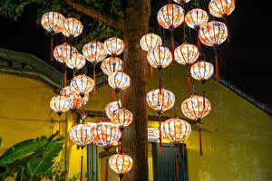 Images Vietnam Parks Many Trunk tree Lantern Hoi An