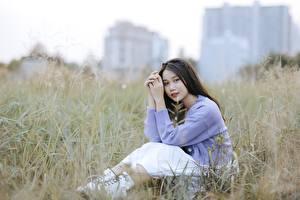Desktop hintergrundbilder Asiatische Brünette Gras Sitzt Bokeh Hand Mädchens