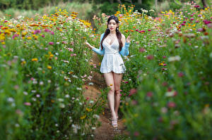 Pictures Asian Gown Legs Bokeh female